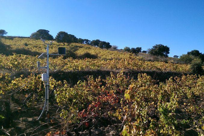 WiForAgri: realizzazione Rete per il Monitoraggio Agrometeorologico della Sardegna