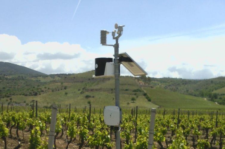 WiForWine per Argiolas Vini, Serdiana (CA)
